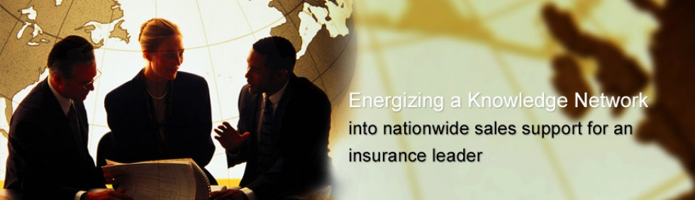 into nationwide sales support for an insurance leader